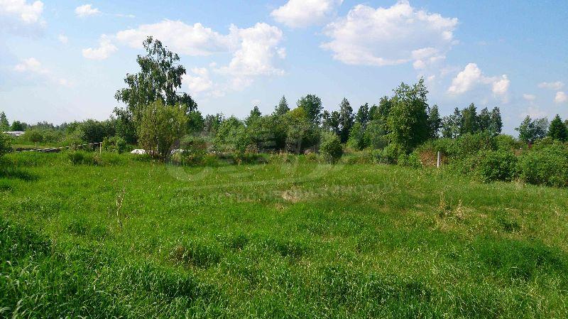 Участок сельско-хозяйственное, с. Каменка, по Ирбитскому тракту