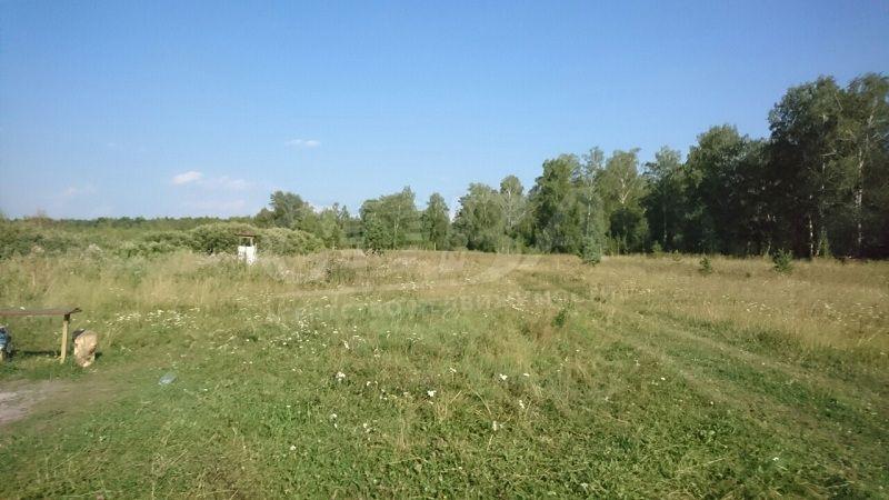 Участок сельско-хозяйственное, п. Мияги, по Тобольскому тракту