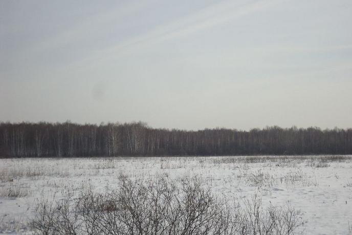 Участок сельско-хозяйственное, с. Червишево, по Червишевскому тракту