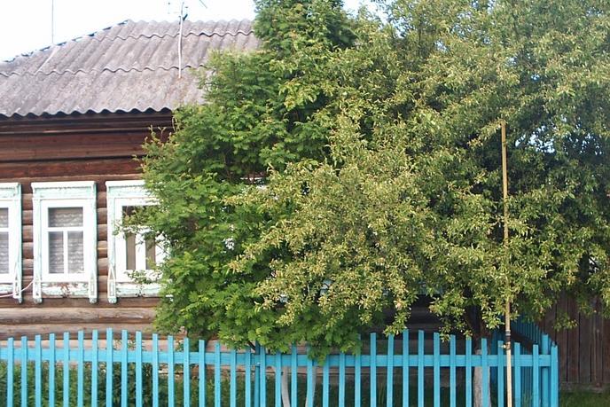 половина частного дома с баней, д. Костылева, по Червишевскому тракту