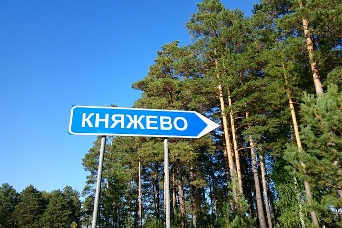 Участок под ИЖС или ЛПХ, с. Княжево, по Ялуторовскому тракту