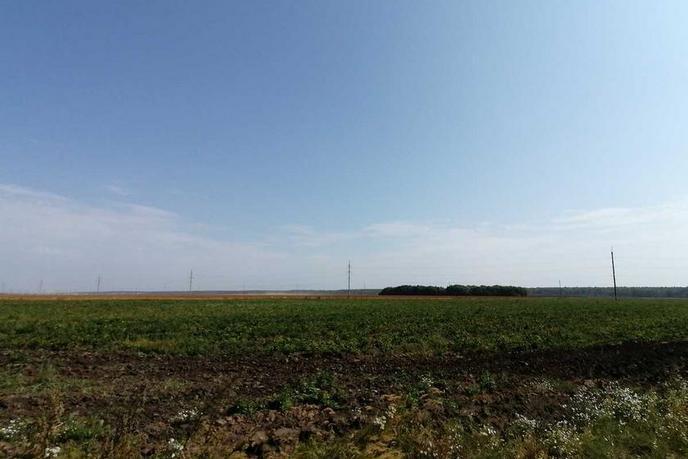 Участок сельско-хозяйственное, д. Есаулова, в районе Старый тобольский