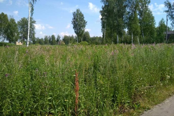Садовый участок, с/о ДНТ Сочинское, по Велижанскому тракту