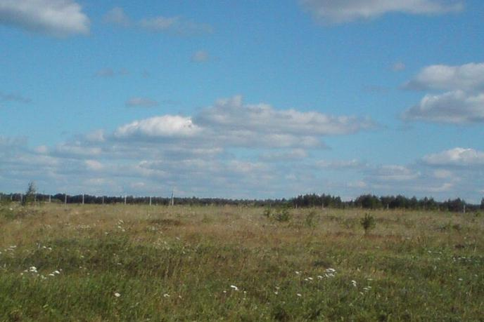 Участок сельско-хозяйственное, д. Штакульская, по Велижанскому тракту