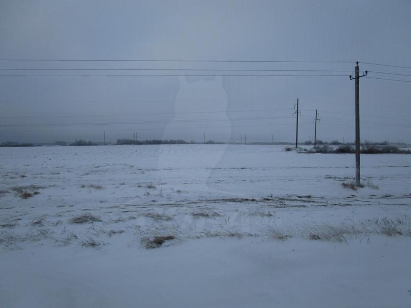 Участок сельско-хозяйственное, в районе Плодопитомник, г. Ялуторовск, по Ялуторовскому тракту