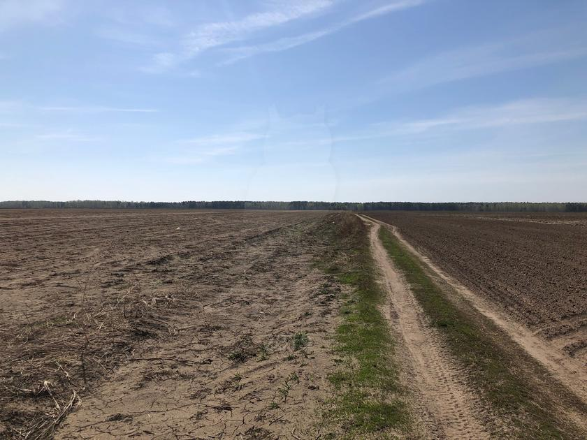 Участок сельско-хозяйственное, с. Мальково, в районе Старый тобольский