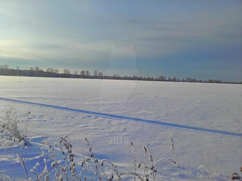 Участок сельско-хозяйственное, п. Голышманово, по Ялуторовскому тракту