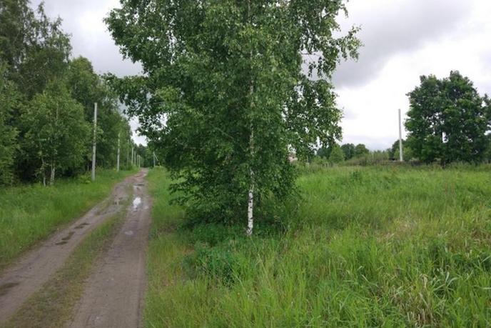 Садовый участок, с/о СНТ Геофизик 2, по Велижанскому тракту