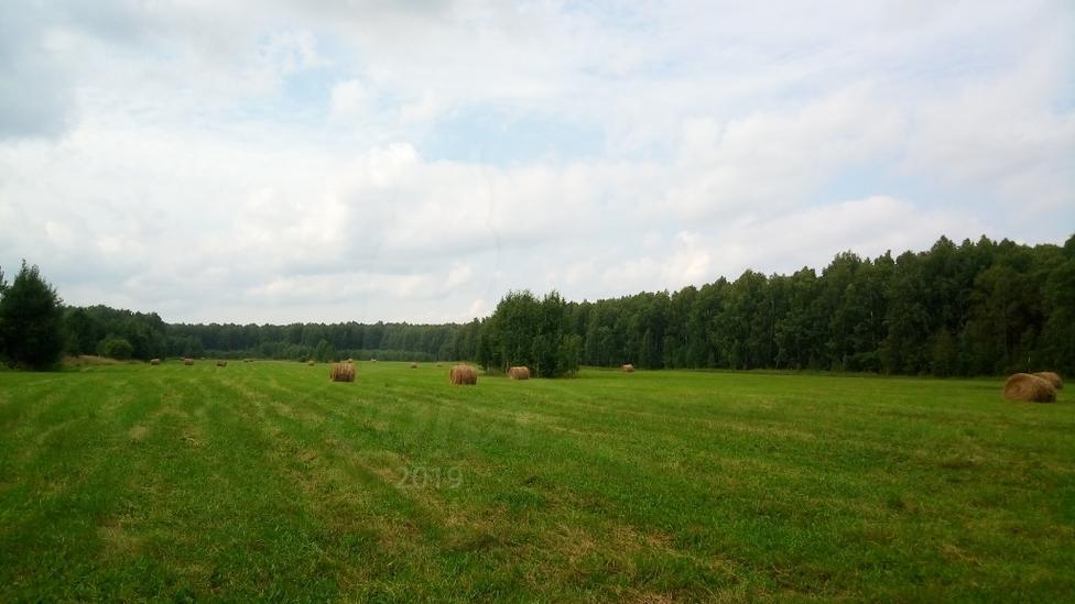 Участок сельско-хозяйственное, в районе Центральная часть, с. Каменка, по Ирбитскому тракту