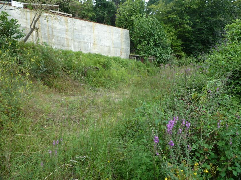 Садовый участок, в районе Центральный, г. Сочи