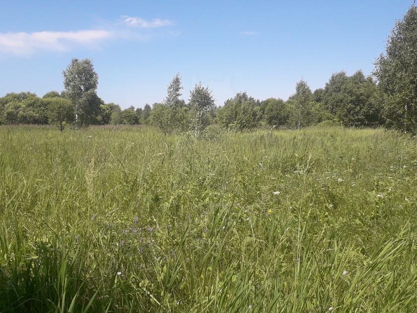Участок сельско-хозяйственное, в районе Верхний бор, г. Тюмень