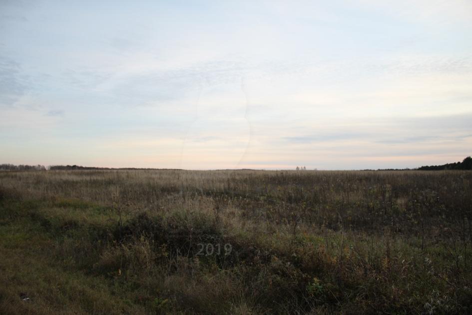 Участок сельско-хозяйственное, д. Коняшина, по Ирбитскому тракту