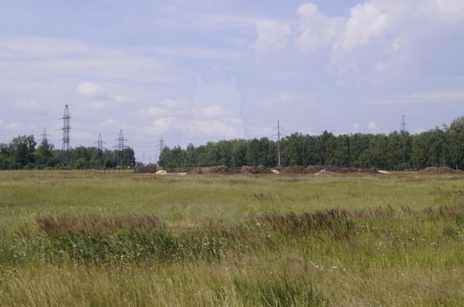 Участок для ведения КФХ, в районе Березняки, г. Тюмень
