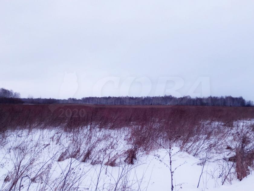Участок под ИЖС или ЛПХ, в районе коттеджный посёлок Озеро Малое, п. Новотарманский, по Салаирскому тракту