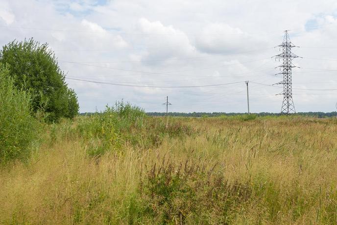 Участок сельско-хозяйственное, в районе урочище Казарма, с. Перевалово, по Московскому тракту