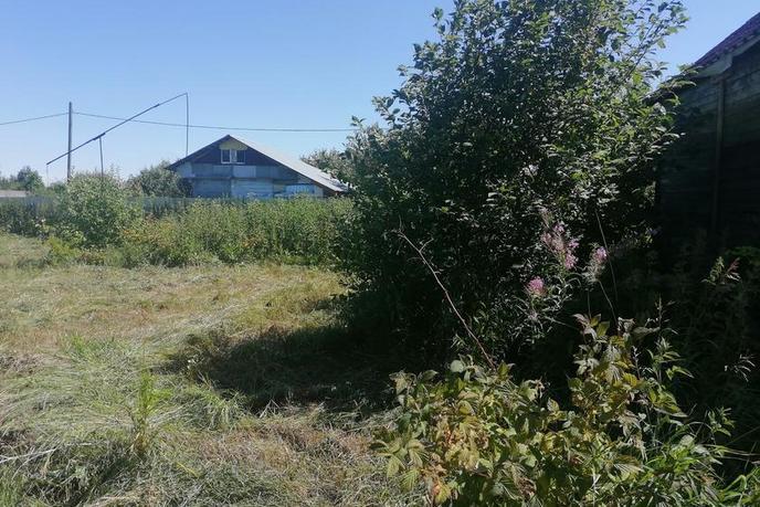 Садовый участок, с. Онохино, по Червишевскому тракту