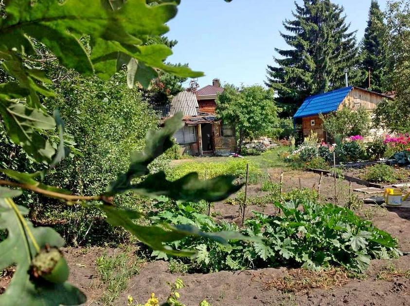 Садовый участок с баней, в районе Березняки, с/о садовое товарищество Приволье, по Салаирскому тракту