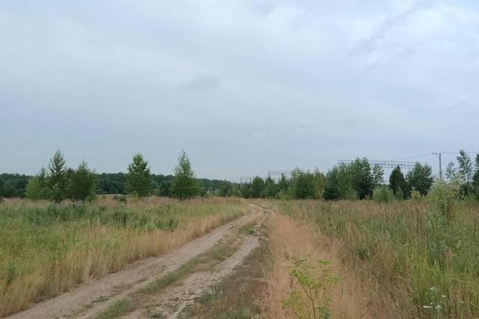 Участок промышленное, д. Паренкина, в районе Старый тобольский