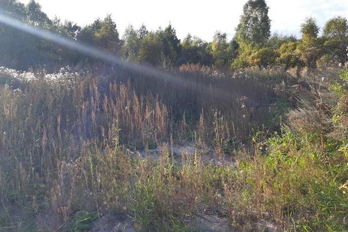 Участок под ИЖС или ЛПХ, в районе Центральная часть, п. Богандинский, по Ялуторовскому тракту