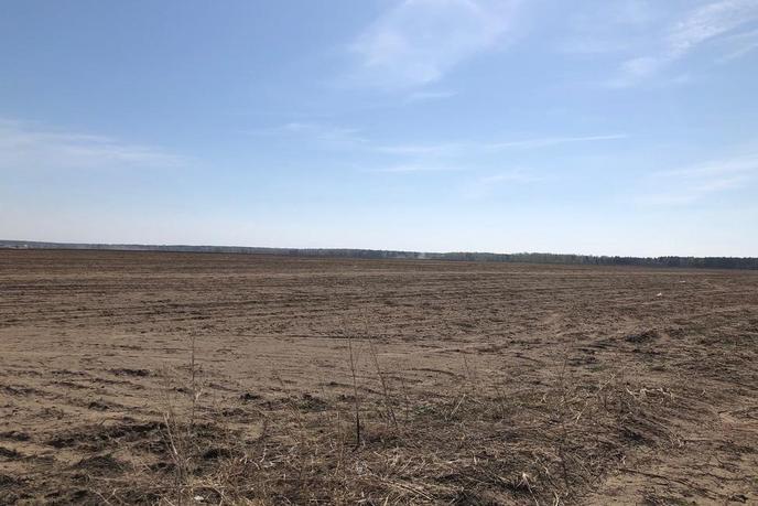 Участок сельско-хозяйственное, в районе Центральная часть, с. Чикча, в районе Старый тобольский