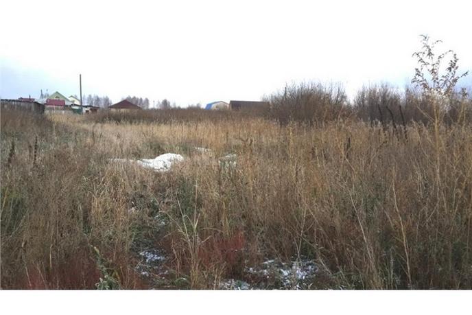 Садовый участок, в районе Березняки, с/о садовое товарищество Липовый Остров, по Салаирскому тракту