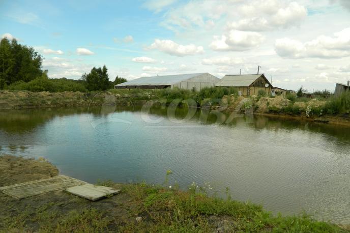 Участок сельско-хозяйственное, д. Екимово, по Червишевскому тракту