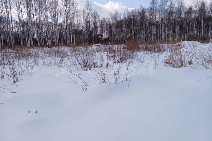 Садовый участок, с. Тюнево, по Велижанскому тракту